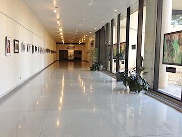 Appearance Sarem School Of The Arts